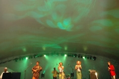 show_portfolio.bluesfestival08